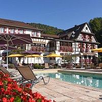 cheval blanc Niedersteinbach belle piscine d'été