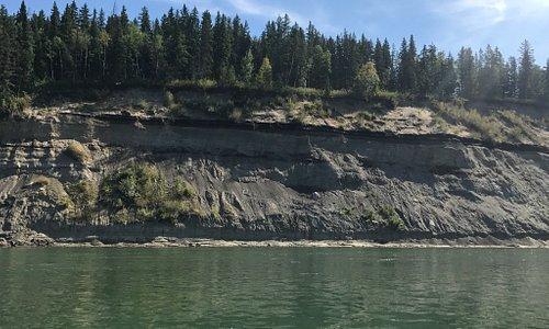 Love the North Saskatchewan River. Great fish and great scenery!