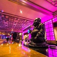Spectacular Bombay Darbar Bar