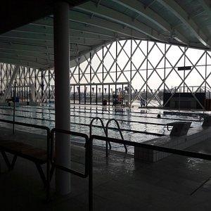 piscine pour les vrais nageurs
