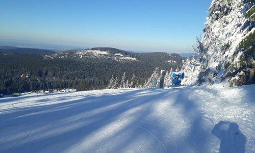 Mehliskopf Ski