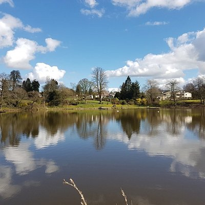 Dungannon Park 24/03/2018 - was stunning weather!! #springishere