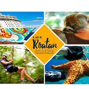 Feel free to ask us any question about Roatan.