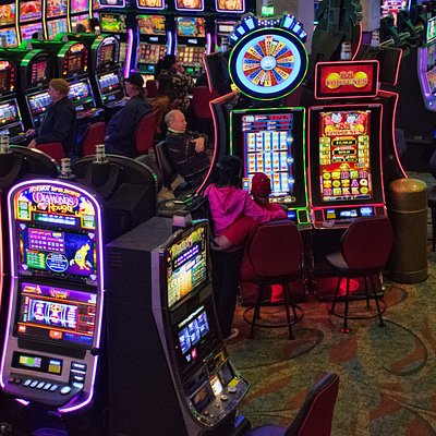 Another Great View Of Our Exciting Slot Machines