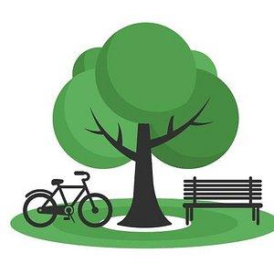 Central Park Bikes New York -