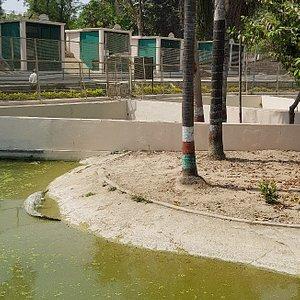 Sarnath Zoo