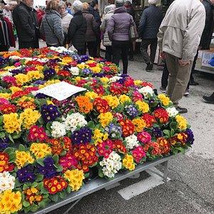 Blumenmarkt 2