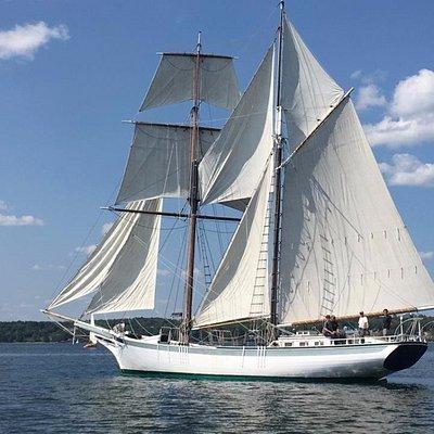 Schooner Actress Sailing out of Belfast Harbor Maine.