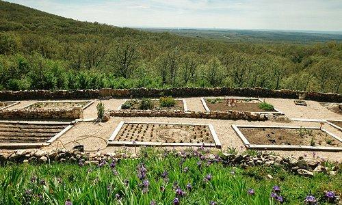 El jardín botánico de plantas tintóreas.