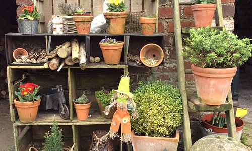 Vintage garden ideas. We sell wooden crates and a small range of shrubs and trees.