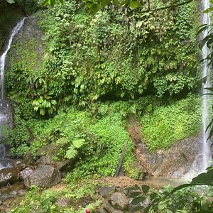 Waterfall at the base of Mt Gimie