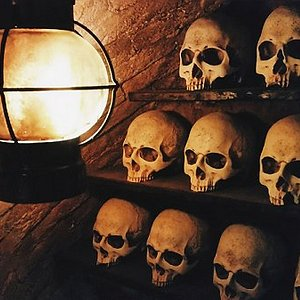 Skulls at the Amsterdam Catacombs