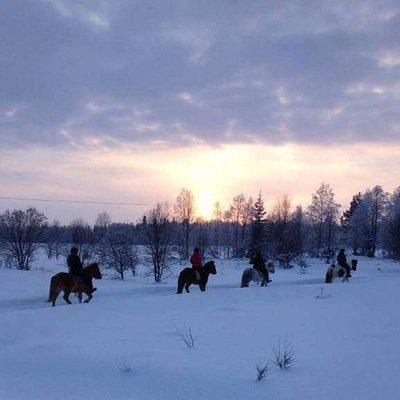 Nurminiemen ratsutila/riding stables