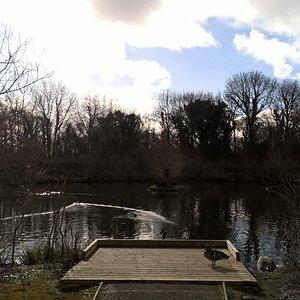 Filham Fishing lake