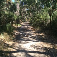 Bushland Reserve pictures