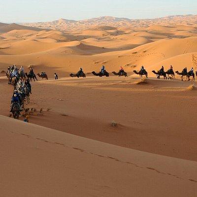 Venture Morocco Tours