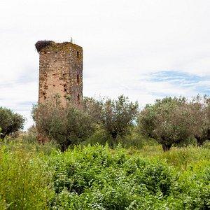 Torre de Val-Boim (Vera Cruz de Marmelar)