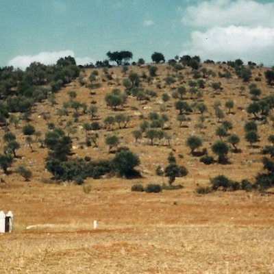 Terreiro da Batalha do Ameixial (Estremoz)