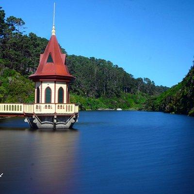 Zealandia, formerly known as the Karori Wildlife Sanctuary