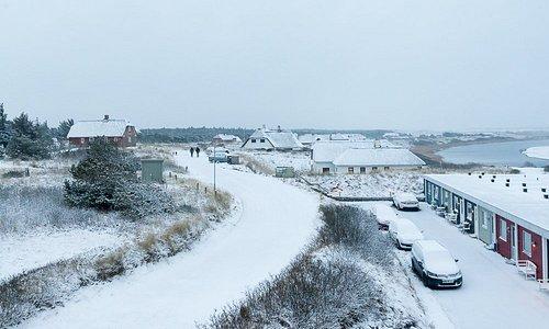 Den sidste morgen vågnede vi op til et snedækket landskab. Det blev udsigten bestemt ikke ringer