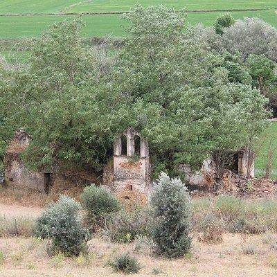 Ruínas da Igreja de São Mamede do Sádão