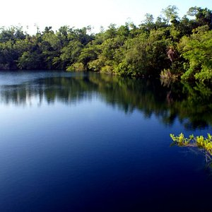160 mts. of deepness @Black Cenote / 160 mts. de profundidad en el Cenot Negro