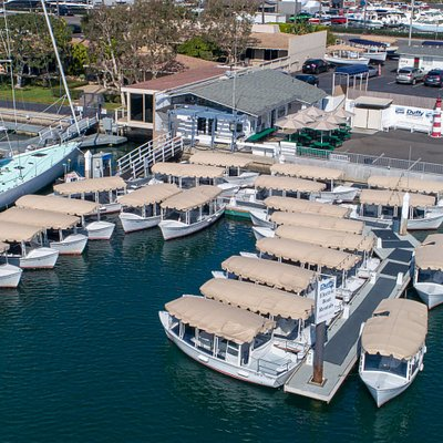 Largest, cleanest rental fleet in the harbor.