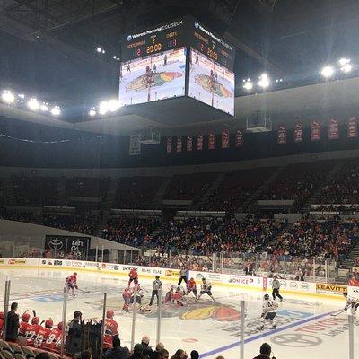 Portland Winterhawks Hockey