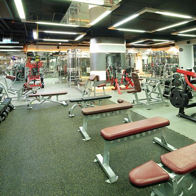 Free Weights & Plate Loaded Area