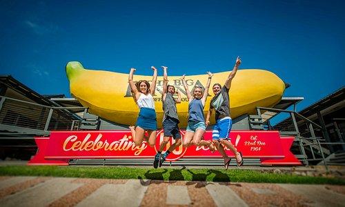 The Big Banana - Est. 1964