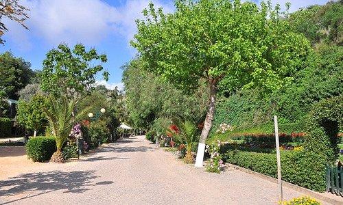 Jardim da Fonte Férrea (Odemira)