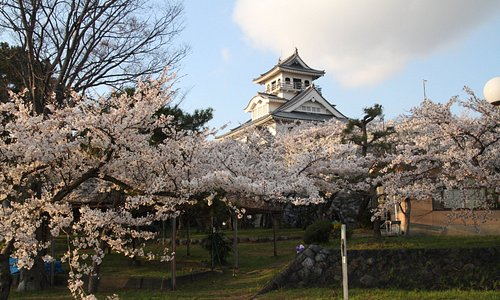 日本櫻花百選