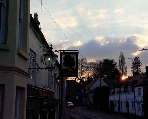 Royal Oak at sunset
