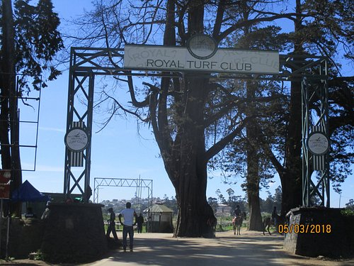 entrance to the track