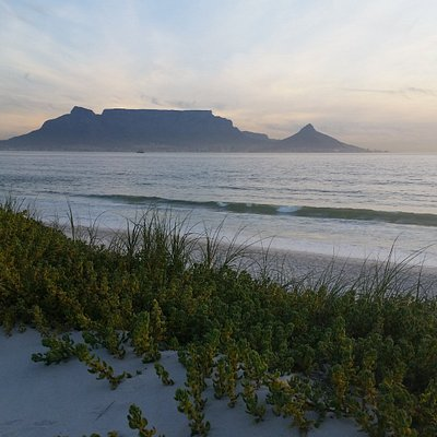 Table Mountain across Table Bay - part of our West Coast tour
