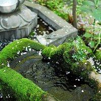 井の頭の石造物群 井の頭恩賜公園の弁天島付近 三鷹市井の頭4丁目1−7