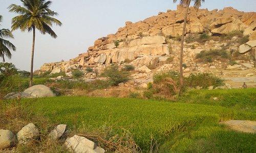 The unexplored rock paintings of Anegundi