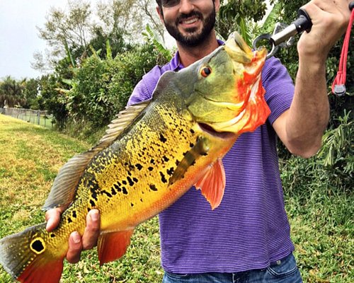 Awesome Fishing trips in Miami