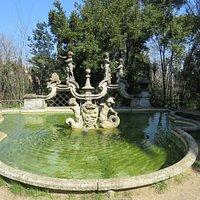 Fontana dei Putti...