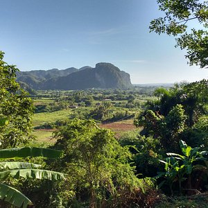 Look at this lush vegetation of the Vinales Valley, its gorgeous!