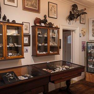 The Marine Gallery