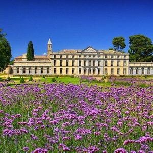 Little Versailles