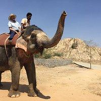 Elephant ride.