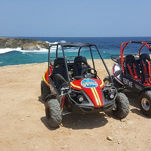Trail-buggies plus ocean view