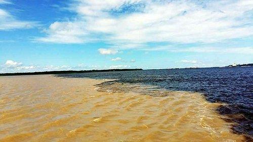 Encontro das Águas muito lindo  Manaus  Amazonas