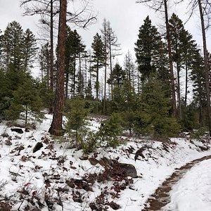 Sloppy trail