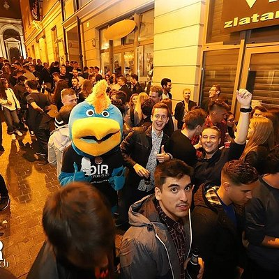 Our mascot in the streets