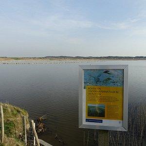 """Vogelreservaat """"De Putten""""in Harger en Pettemerpolder"""