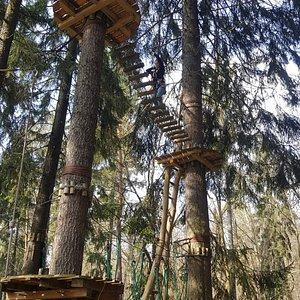 The Best Dresden Zipline Aerial Adventure Parks With Photos Tripadvisor