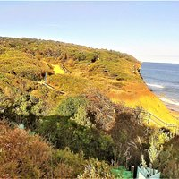 Sandy Gully is included in the Aireys Inlet Cliff Top Walk. [2018]